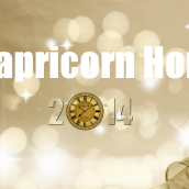 Capricorn – Horoscope 2014
