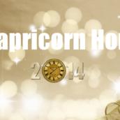 Capricorn – Horoscope 2014